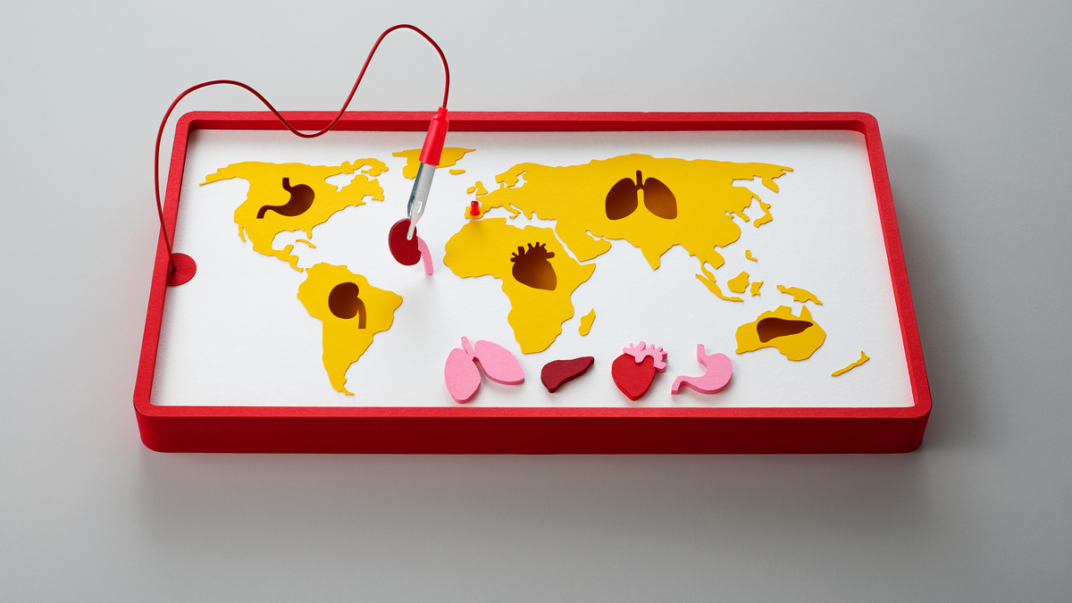 UPDATED: Spain leads the world in organ donation  What's stopping