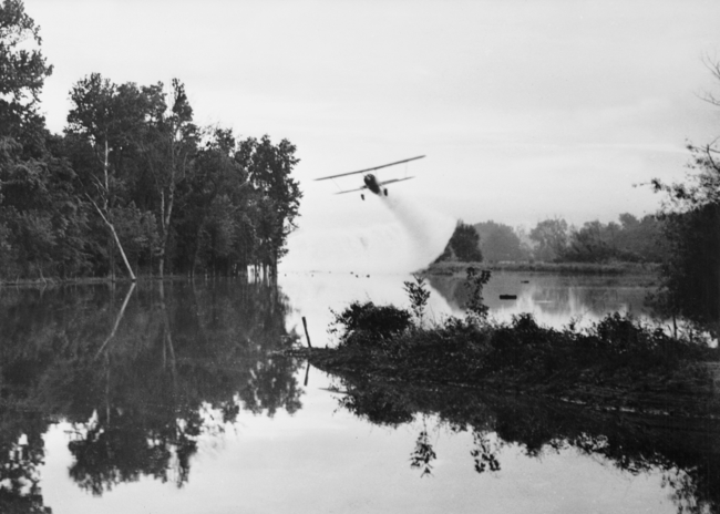 A US Army plane spreading insecticide on a New Guinea stream to destroy mosquitos, 2 March 1945.