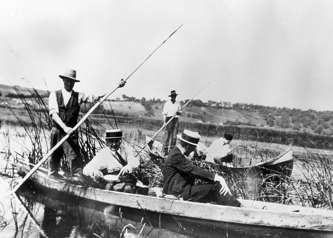 Members of the League of Nations Malaria Commission collecting larvae on the Danube delta, 1929.