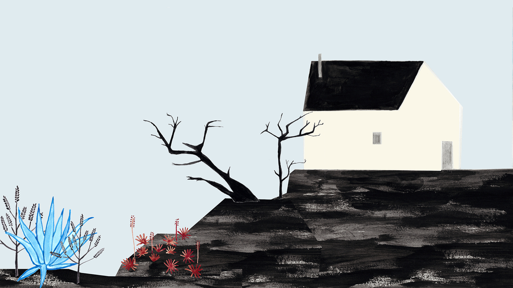 House by Ana Frois
